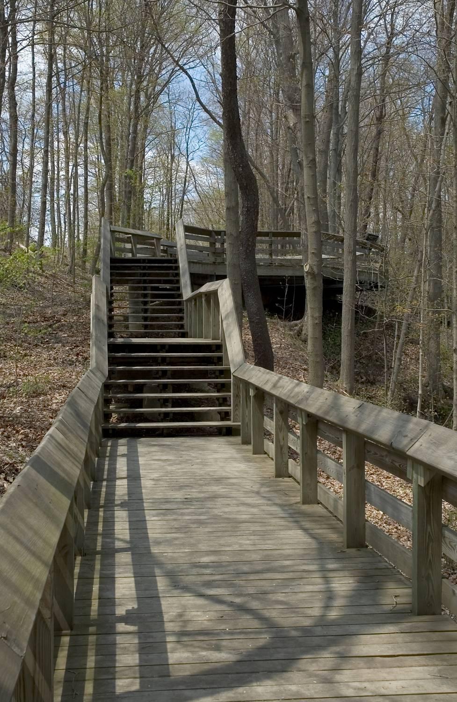 Boardwalk and Overlook