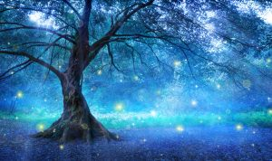 Tree In Mysterious Forest