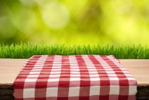 End of Summer Picnic @ Riverdale-Yonkers Society for Ethical Culture | New York | United States