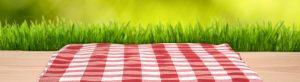 Summer Celebration! Potluck Picnic 2019 @ Riverdale-Yonkers Society for Ethical Culture | New York | United States