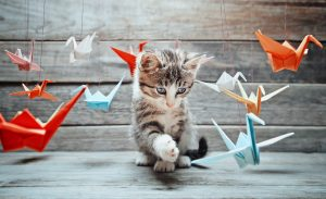 Cute little kitten is playing with colorful paper cranes on wooden background