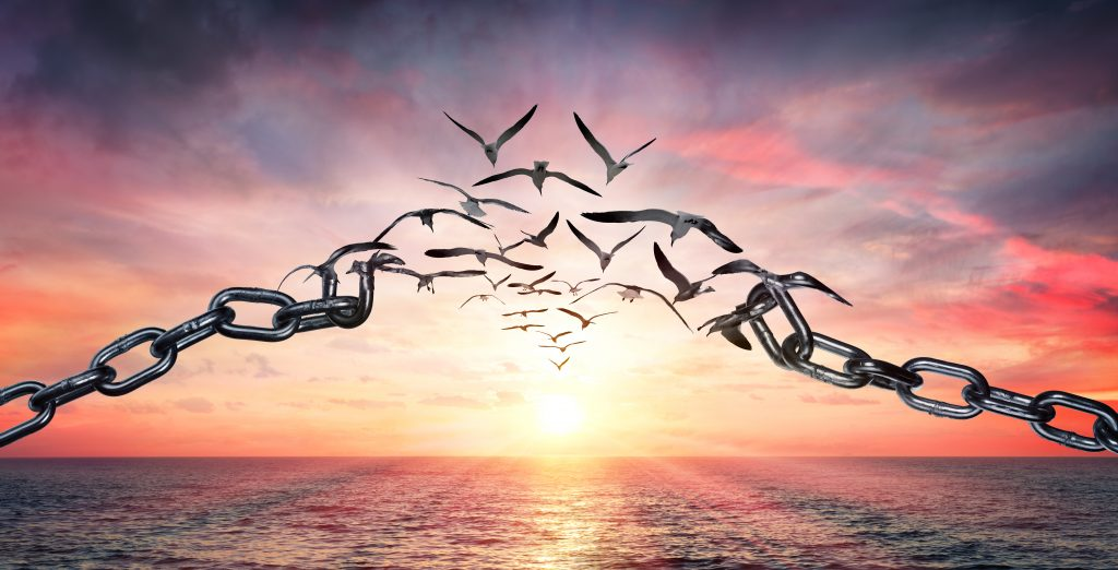 Background: rising sun. A chain of metal links transforms in the center to doves.
